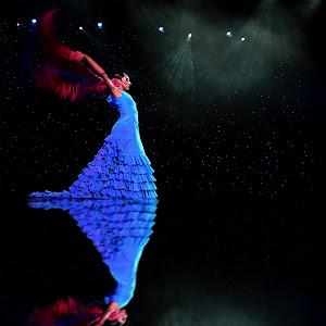Flamenco I.jpg