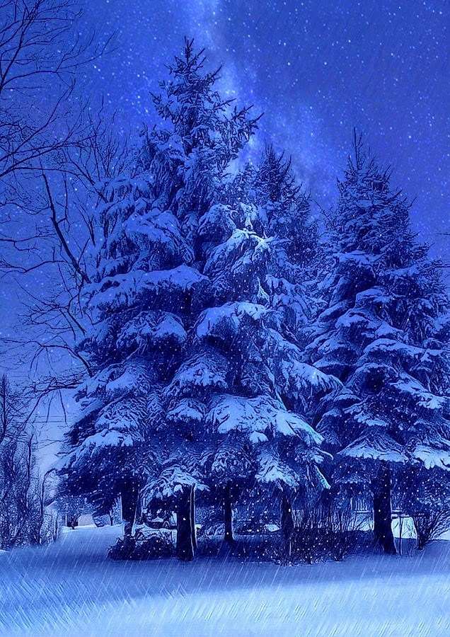 Night snow by Mary Waters - Digital Art Things ( tree, nature, digital art, snow, fine art )