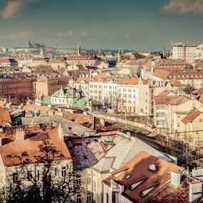 Prague by Artur Jakutsevich - City,  Street & Park  Vistas ( the roof, winter, height, church, cathedral, prague, sun, city )