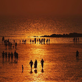Golden Beach by Amit Samant - Landscapes Sunsets & Sunrises