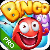 Free Bingo - Pro Bingo Crush™ APK for Windows 8