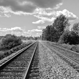 Railroad Wonder by Ernie Kasper - Instagram & Mobile iPhone ( clouds, instagram, black and white, railroad, fort langley, tracks, landscape, panorama, instapic, sky, railway, trees, bnw_capture, scenery, bnw, rocks, bc )