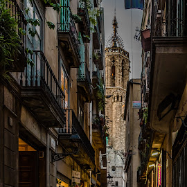 Gothic Quarter by Angela Higgins - City,  Street & Park  Historic Districts ( barcelona, gothic quarter )