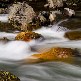 Rapids on the Middle Prong - Great Smoky Mountain NP by John  Pemberton - Nature Up Close Water ( water, blurred, great smoky mountains national park, rapids, long exposure )