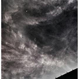 by Clara Aruștei - Instagram & Mobile Android ( moon, dark, shadows )