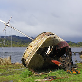 Abandonment by Kim Pauly - Novices Only Objects & Still Life ( #australia, #ship wreck, #high and dry, #huon river tasmania, #lady franklion, #boat )
