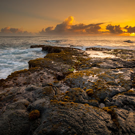 Morning Feels by Jared Goodwin - Landscapes Sunsets & Sunrises ( natural light, waterscape, sunflower, rock, landscape, sun, sun rays, nature, cloudy, nature up close, long exposure, sunshine, gold, rocks, foreground, hawaii, golden hour, clouds, water, sun rise, cloudscape, sea, seascape, paradise, sunlight, lava, sunset, cloud, sunrise, landscapes, natural, golden, slow shutter )