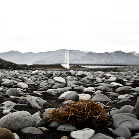 Black sand beach by Vala Valgeirsdóttir-Vincent - Landscapes Beaches ( sand, iceland, black and white, rocky, bridge, beach, black sand, rocks, saturated )