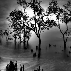 the gripping by Harry Aiee - Landscapes Waterscapes