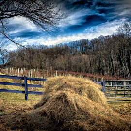Making Hay by Scott Bryan - Landscapes Prairies, Meadows & Fields ( field, farm, ohio, hay, rural, country )