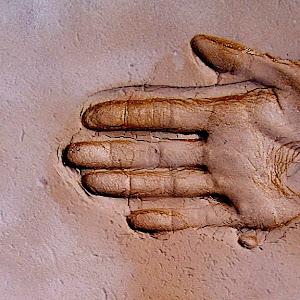 Hand 110.jpg