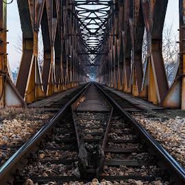 Journey Into The Unknown  by Nenad Borojevic Foto - Transportation Railway Tracks (  )