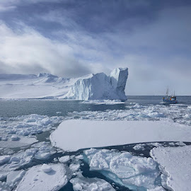 Floating Mega Icebergs by Fokion Zissiadis - Landscapes Waterscapes ( polar, glacier, icebergs, greenland, arctic )