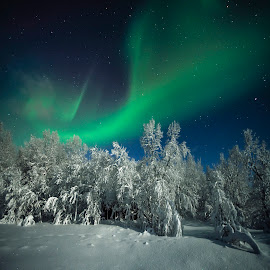 Night by Jens Andre Mehammer Birkeland - Instagram & Mobile Other ( winter, stars, snow, aurora borealis, star )