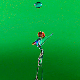 from 3 small drops by Cathy Davies - Artistic Objects Other Objects ( water, splash, droplet, splash photography, artistic,  )