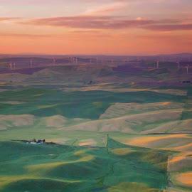 Rugged Lands by Gabriel Gutierrez - Landscapes Mountains & Hills ( palouse, hills, sunset, farmland, wind turbines, fields )
