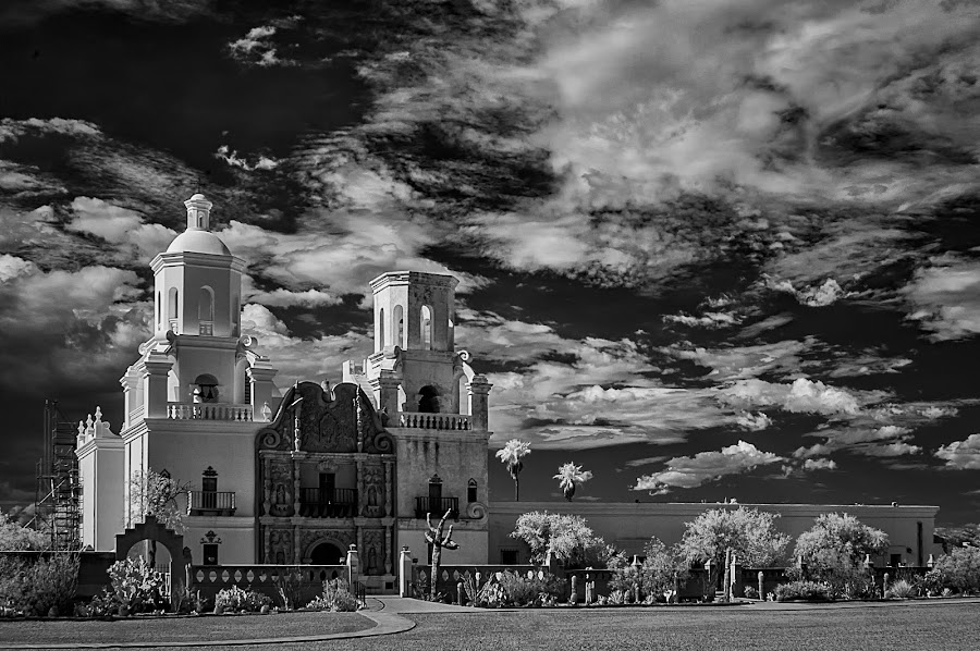 Desert Dove by Scott Wood - Black & White Buildings & Architecture ( clouds, ir, desert, sky, church, mission, san xavier, black&white, cactus,  )