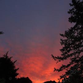 by Pal Mori - Landscapes Sunsets & Sunrises