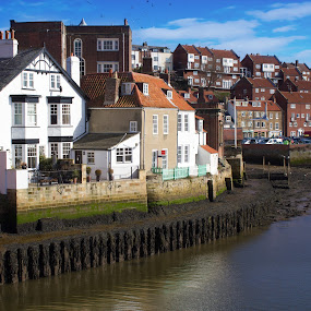 by Stephen Hooton - City,  Street & Park  Historic Districts ( whitby )