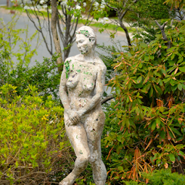 The Lady of the Garden by Rob Kovacs - Buildings & Architecture Statues & Monuments