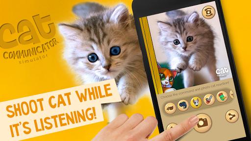 Human - cat translator joke - screenshot