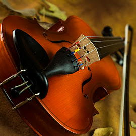 Music of autumn. by Rakesh Syal - Artistic Objects Musical Instruments (  )