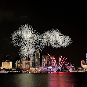 National Day fireworks by Senthil Damodaran - Public Holidays Other ( night, lights )