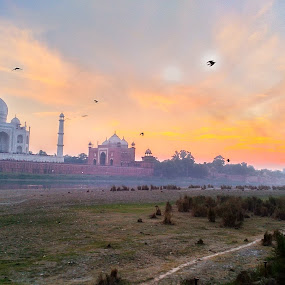 Golden Taj  by Ishrar Khan - Buildings & Architecture Architectural Detail