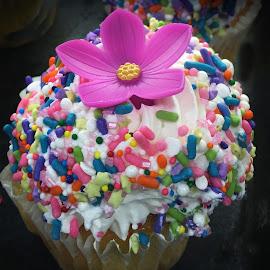 Sprinkled Cupcake by Millieanne T - Food & Drink Candy & Dessert ( bakery cupcake sprinkles )