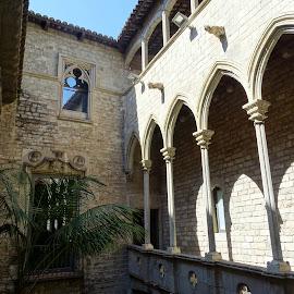 Palazzo gotico a Barcellona by Patrizia Emiliani - City,  Street & Park  Historic Districts ( palazzo gotico, spagna, barcellona )