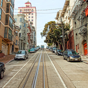 The Streets of San Francisco by Susan Foss - City,  Street & Park  Street Scenes ( downhill, cable, steep, san francisco )