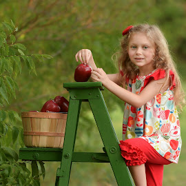 Fall Apples by Marie Burns - Babies & Children Child Portraits ( red, ladder, fall, girls, apples )