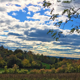 Rolling Hills and Cloudy Skies by Kristine Nicholas - Novices Only Landscapes ( clouds, hills, hill, grass, green, wooded, hilly, leaf, landscape, leaves, dusk, woods, blue sky, tree, blue, autumn, fall, trees )