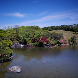 Mino Park by Ferdinand Ludo - City,  Street & Park  City Parks ( koi fish, osaka japan, mino park, pond )