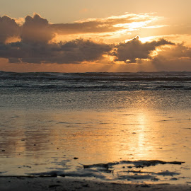 End of the Day by Randi Hodson - Landscapes Sunsets & Sunrises ( sunset, beach,  )