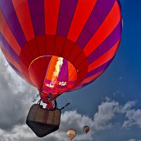 Balloon Fest by Mark Turnau - Transportation Other