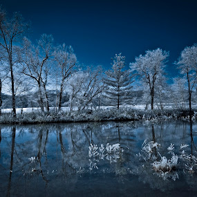 Blue by Mark Turnau - Landscapes Prairies, Meadows & Fields (  )