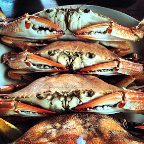 Delicious Steamed Crab by Pom Wanchart - Food & Drink Plated Food