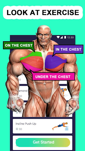 Chest Max For PC