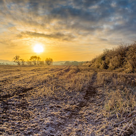 Scottish Sunrise by Michael Payne - Landscapes Prairies, Meadows & Fields ( scotland, perthshire, tawny cottage, hoiday )