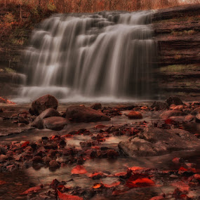 by Susan Campbell - Landscapes Waterscapes