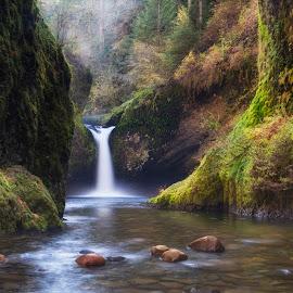 Lush Environment by Ken Smith - Landscapes Travel ( oregon, eagle creek, landscape, punchbowl falls )