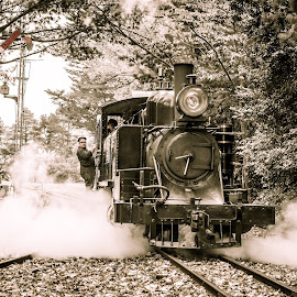 Into the station by Scott Cove - Transportation Trains ( selective color, autumn, steam train, trees, train, transportation, tracks, steam )