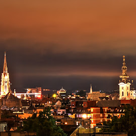 Catholic vs. orthodox by Marko Petrović - Buildings & Architecture Places of Worship ( sky, novi sad, church, night, cathedral, view, panorama, city, city at night, street at night, park at night, nightlife, night life, nighttime in the city )