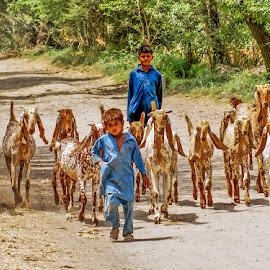 by Mohsin Raza - Babies & Children Children Candids