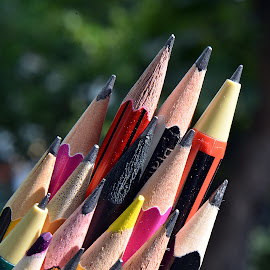 Sunlit pencils by Pradeep Kumar - Artistic Objects Still Life