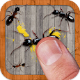 Ant Smasher Pro by Best Cool & Fun Games