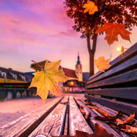 Autumn on the park bench Samobor Croatia by Davor Đopar - City,  Street & Park  Street Scenes ( park, bench, croatia, cityscape, leaf, leaves, morning, dusk, autumn, samobor, falling  leaves, fall, park bench, moody, trees, night, town square )