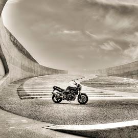 Suzuki bandit 1200 by Nicky Staskowiak - Transportation Motorcycles ( suzuki, motorcycle, belgium, architecture, suzuki bandit 1200,  )
