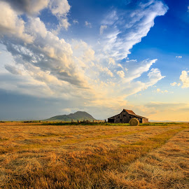 Bear Biutte by Kendra Perry Koski - Landscapes Prairies, Meadows & Fields ( meade county, thunderstorm, grass, storm, landscape, gray sky, lightning, barn, blue, sunset, hay, summer, july, hay bale, bear butte )